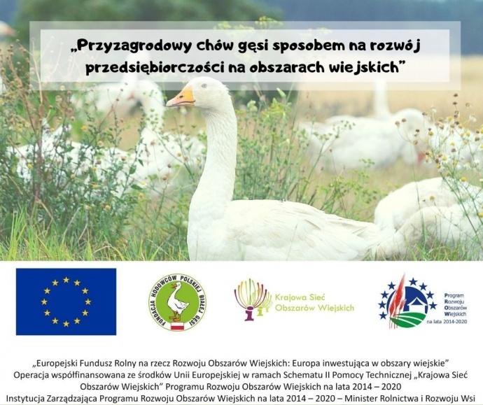LGD Czarnoziem na Soli -  Przyzagrodowy chów gęsi sposobem na rozwój przedsiębiorczości na obszarach wiejskich - szkolenie